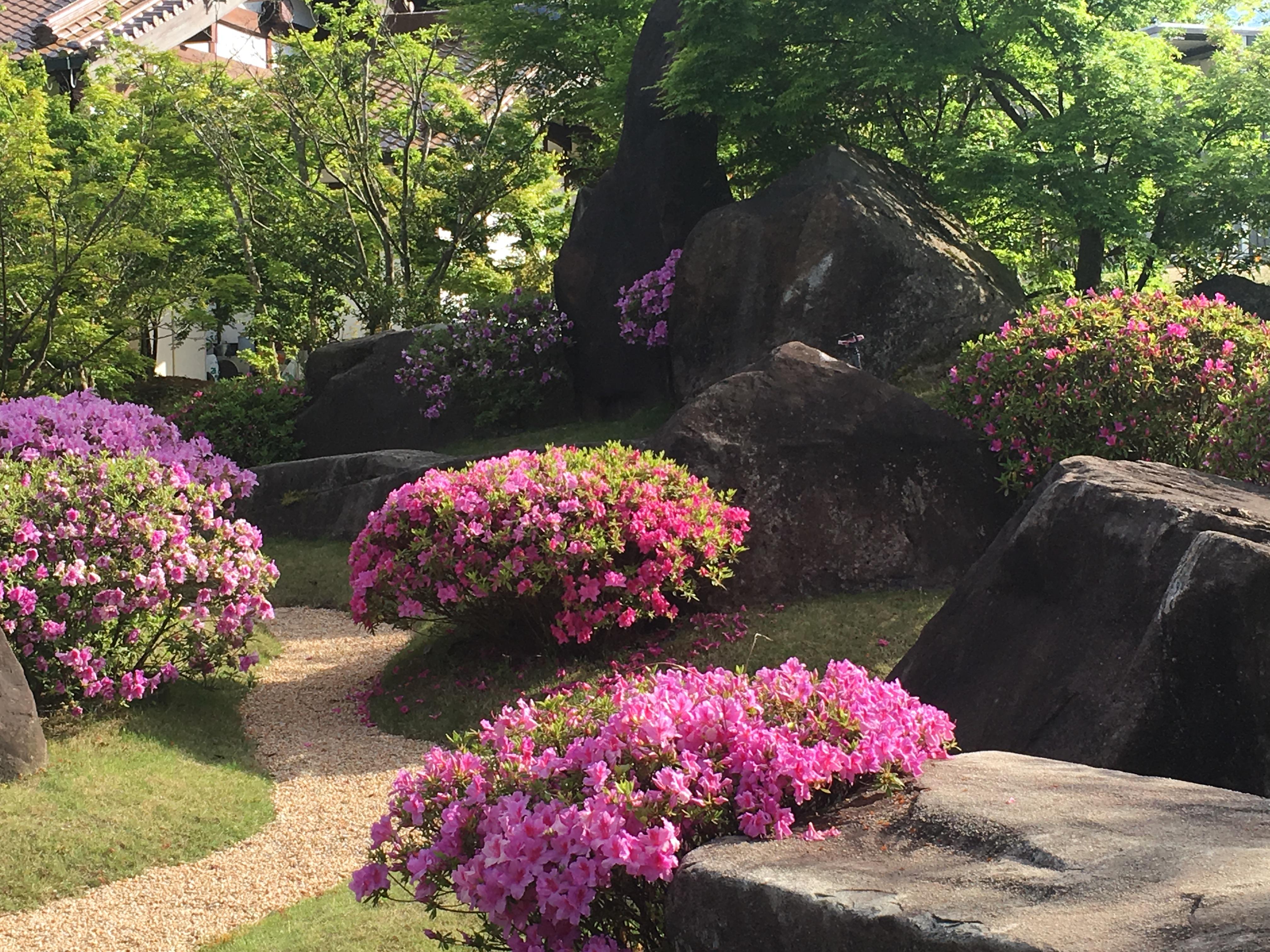 平戸つつじの咲く一夜庭