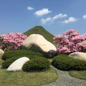 サツキと仙石富士